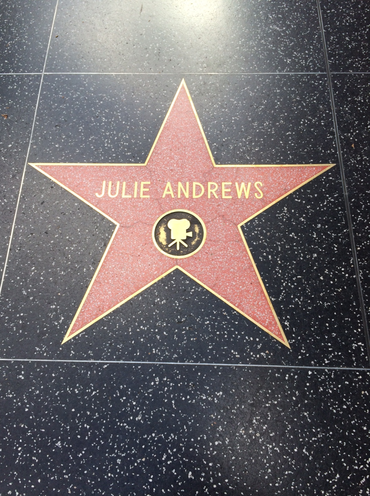 Julie Andrews...my favorite actress